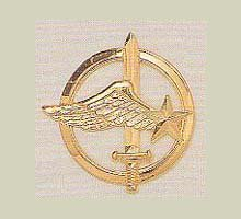 Insigne des Commandos de l'Air